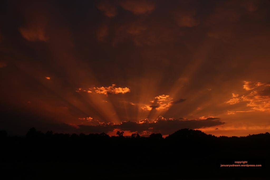 sunset_januarysdreamwordpress