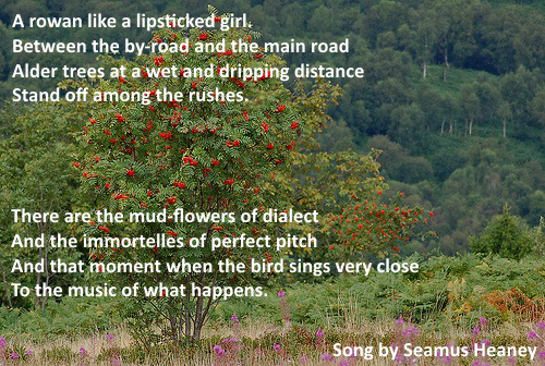 seamus-heaney-song1