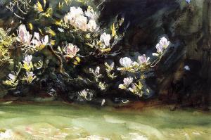 magnolias.jpg~original